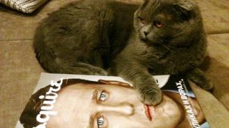 ФБ: Услада украла кота Навального и потребовала выкуп