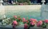 Петербургские фонтаны готовят к отключению в октябре