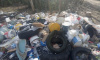 Жители Нового Девяткино пожаловались на горы мусора в Капральевом парке