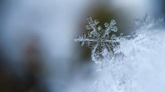 В пятницу в Петербурге пойдёт снег