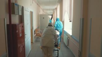 Без локдауна весной 2020 в Петербурге могли бы заболеть коронавирусом 1 млн человек