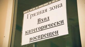 Эксперт СПбГУ: пик заболеваемости коронавирусом может наступить через два дня