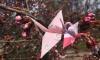В Ботаническом саду поселятся 10 тысяч журавликов