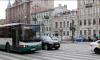 В Петербурге сформировали автобусные маршруты