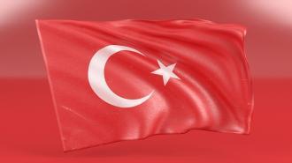Турецкие силовики задержали приверженцев ИГ* в Стамбуле