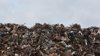 В Ленобласти появится экологическая милиция