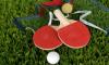 Два теннисиста из Ленобласти в составе сборной России поборются за победу