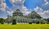За снос оранжереи Лесотехнический университет заплатит 590 тысяч рублей