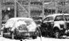 Гидрометцентр: неделя в Петербурге начнется со слякоти и дождя