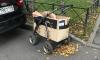 Депутат ЗакСА потребовал объяснений: почему дворники заменяют тележки колясками
