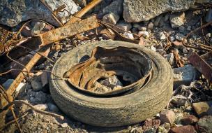В Выборге власти готовятся усилить контроль за вывозом мусора