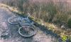 В Коммунаре велосипедист погиб под колесами грузовика