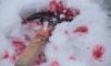 В квартире на Шаврова нашли пенсионерку с пробитой головой