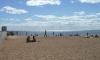 В защиту Золотого пляжа в Зеленогорске собрали тысячу подписей