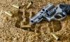 Двухлетний мальчик из США играл с пистолетом отца и застрелил себя
