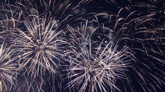 Более 230 000 ленинградцев участвовали в праздничных мероприятиях 9 мая