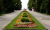 В Зеленогорске благоустроят городской парк