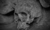 В Выборгском районе дети нашли в заброшенном доме человеческий скелет