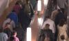В Петербургском метро серьезно пострадали два человека