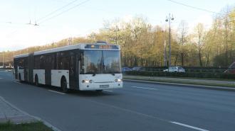 Дополнительные автобусы пустят на кладбища Петербурга в Вербное воскресенье
