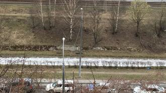 Фото: в реке Волковке у проспекта Славы заметили пену
