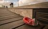 В Смольном прокомментировали ситуацию с мусором на улицах города