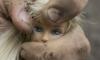 Торговец коврами развращал 14-летнюю девочку под носом у ее мамы