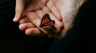 """В Петербурге """"люди-бабочки"""" впервые бесплатно получили медикаменты"""