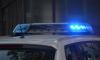 Повешенного мужчину на столбе ЛЭП нашли во Всеволожском районе