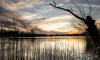 Найден владелец зловонной трубы на Среднем Суздальском озере