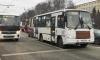 В Петербурге на маршруты вернулись почти 100 коммерческих автобусов