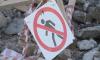 В Кировском районе снесут незаконные постройки