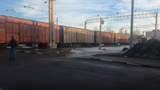 На станции Кикерино в Ленобласти под поездом погиб человек