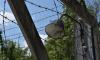 В Ленобласти обнародуют сборник документов о зверствах нацистов