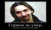 """В Петербурге хотят установить памятник """"Горшку"""""""