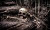 На западе Москвы рабочие нашли четыре скелета
