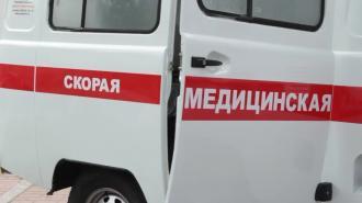 Тело петербурженки в целлофане вынесли из квартиры на улице Димитрова