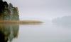 В Колпино в пруду нашли тело одиннадцатиклассника