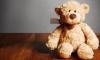 В США в плюшевом медведе обнаружена бомба