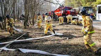В Петербурге проходят учения по подготовке к пожароопасному сезону