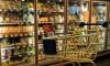 Вернувшуюся из Турции петербурженку оштрафовали за поход в магазин