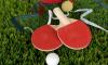 Спортсмены Ленобласти продолжают борьбу на Молодежном первенстве Европы по настольному теннису