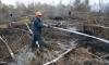 Министр обороны Польши не смог доказать, что самолет Качиньского рухнул из-за теракта