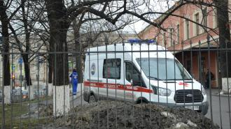 Прокуратура Петербурга займется делом о рухнувшем на ребенка куске лепнины