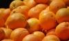 Россия ищет замену турецким помидорам и апельсинам
