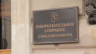 Петербургские депутаты не захотели срочно ограничивать продажу снюса