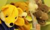 На Новоселов петербуржец похитил ноут из детского сада