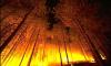 МЧС предупреждает о грозящих снова лесных пожарах