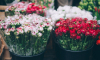 Не купивший букет на 8 марта мужчина заминировал цветочный на Московском