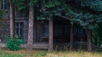Мужчина ограбил частный дом во Всеволожске